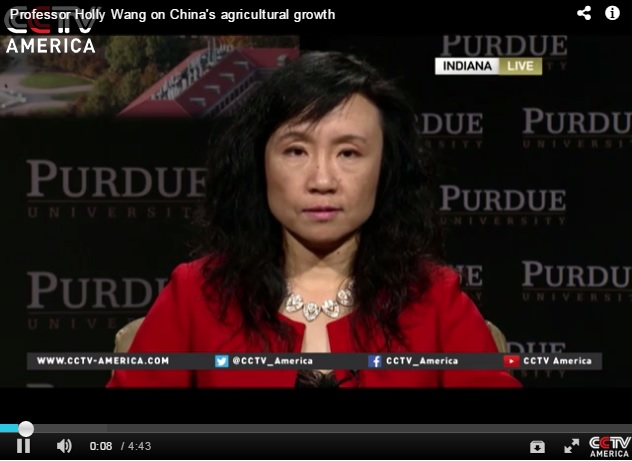 Holly Wang on State of China's Agriculture
